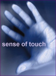 sense of touch - September 14, 2014s