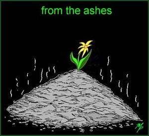 flower ashes 402w - February 19, 2016s