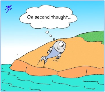fish second thought b - May 8, 2016s